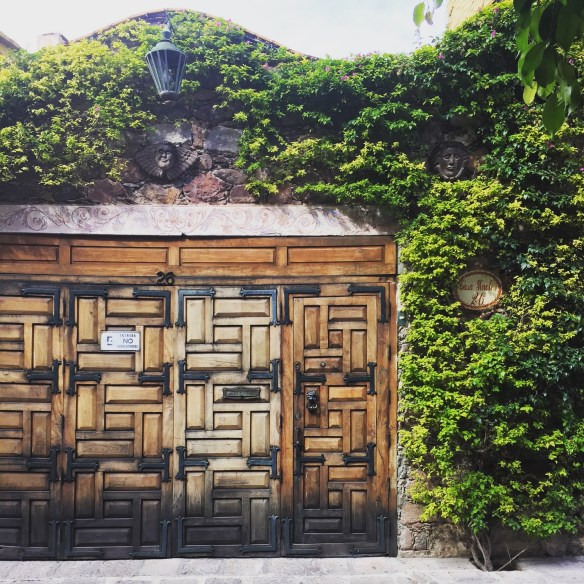 Doors of San Miguel by The Potted Boxwood 34