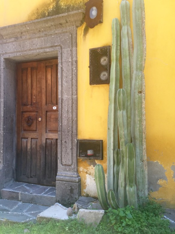 Doors of San Miguel by The Potted Boxwood 43
