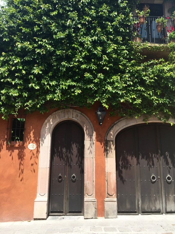 Doors of San Miguel by The Potted Boxwood 50