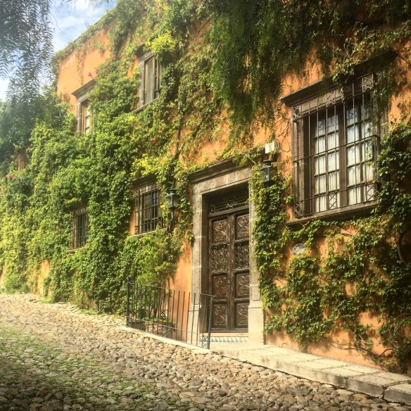 Doors of San Miguel by The Potted Boxwood 51
