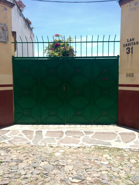 Doors of San Miguel by The Potted Boxwood 9