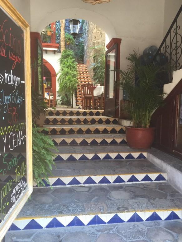 San Miguel de Allende The Potted Boxwood 64