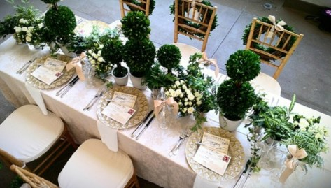 Boxwood Centerpiece via Borrowed and Blue