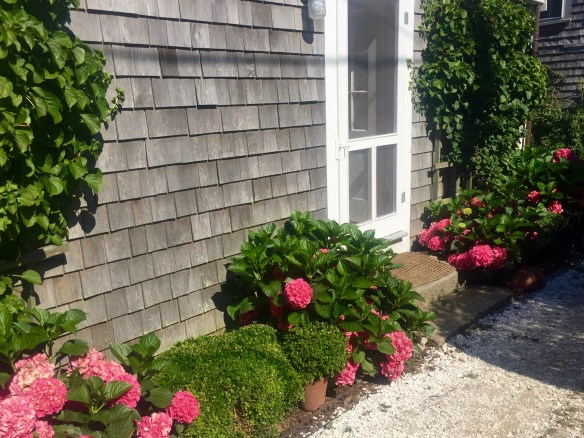 Photos of Nantucket by Christina Dandar for The Potted Boxwood 12