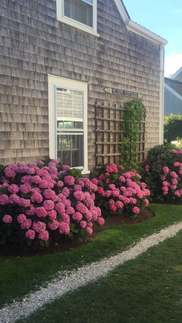 Photos of Nantucket by Christina Dandar for The Potted Boxwood11