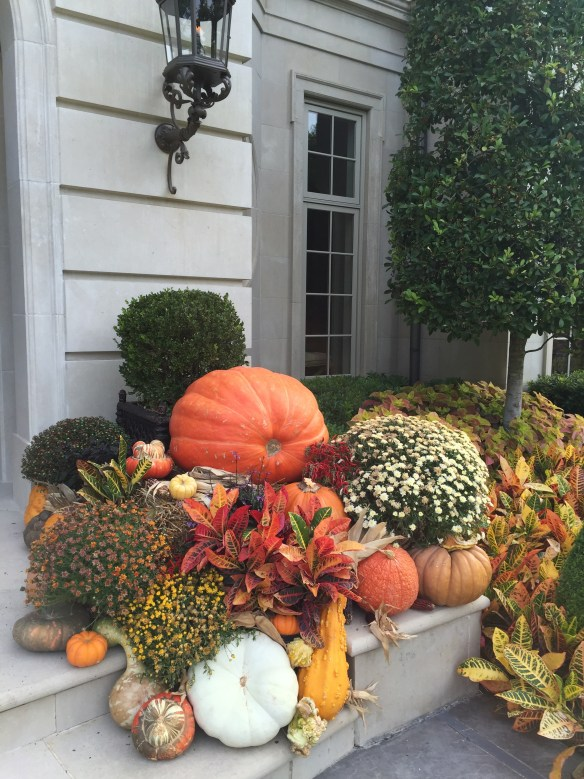 gorgeous-green-and-white-pumpkins-at-a-dallas-home-photo-by-christina-dandar-for-the-potted-boxwood-4