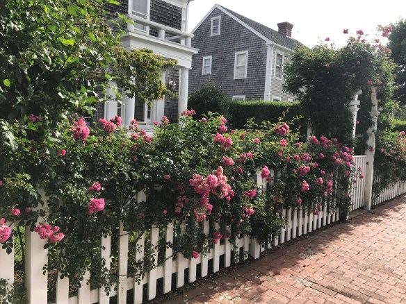 Nantucket home photo by christina dandar for The Potted Boxwood 12