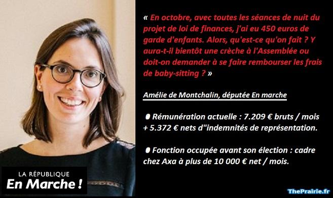 Amélie de Montchalin, twitter - ThePrairie.fr !