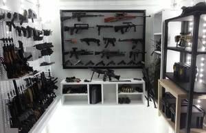 Best Prepper Guns