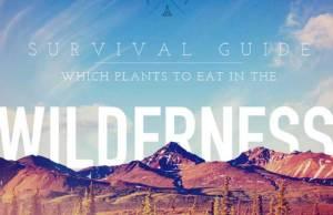 WildernessSurvivalGuide