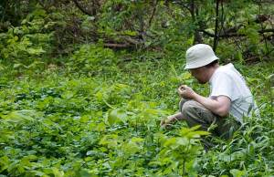 Foraging might be a method you have to use to find food. Edible plants are one way to eat.