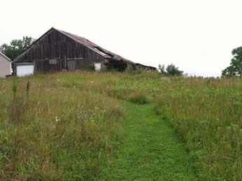 An abandoned farm in our neighborhood