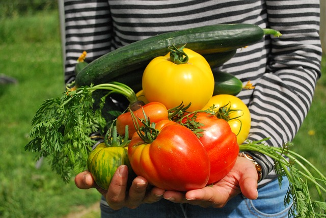 For a well-rounded plan, growing your own food will give you the most flexibility.
