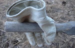 glove-851909_640