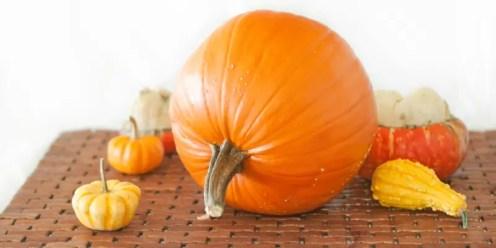 Curried Pumpkin & Apple with Raisins - www.ThePrimalDesire.com