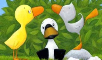 Duck, Duck, Goose & Other Learning Rhymes