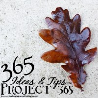 365 Ideas & Tips for Project 365!