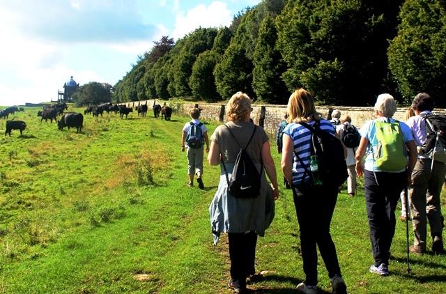 Yorkshire HF Walking Holiday - Castle Howard - photo zoedawes