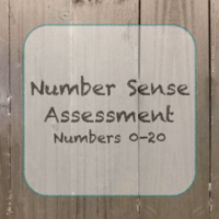 Number Sense Assessment
