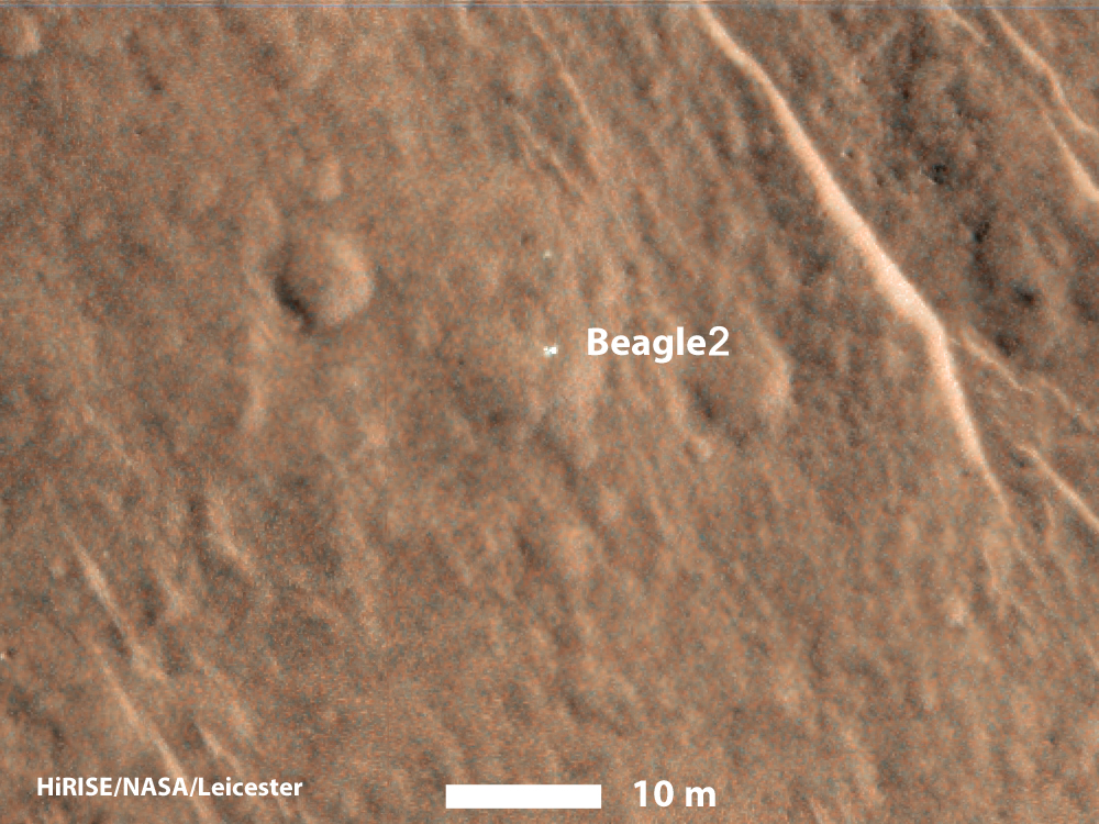 pia19105_mro-beagle-color