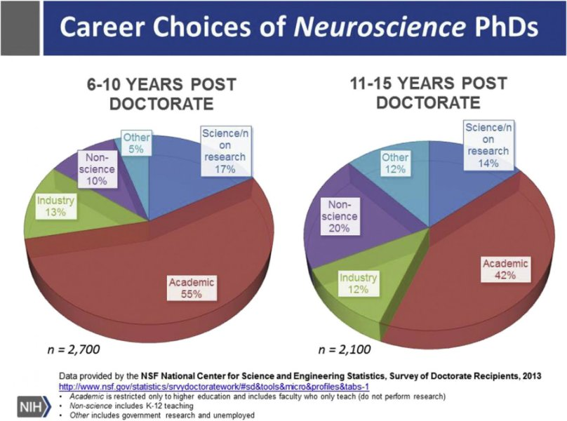 Neuroscience PhDs