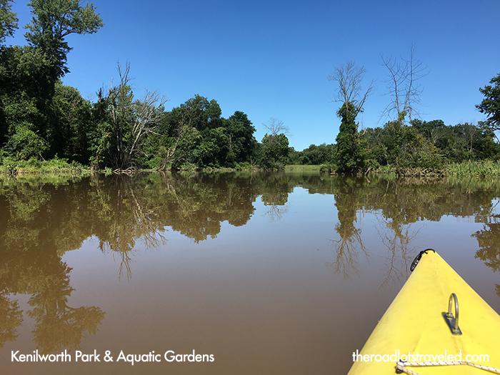 Kayaking in Kenilworth Park & Aquatic Gardens