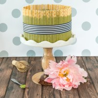 Chocolate Matcha Pocky Cake with Matcha Mousse