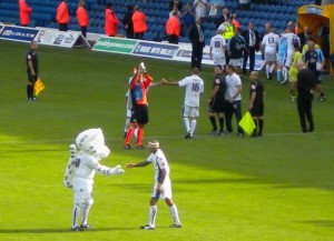 Picture by DTS1970@Twitter showing Lucas The Kop Cat congratulating the players.