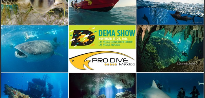 "Pro Dive Mexico launches 2014 DEMA & ""Ultimate Dive Experience"" SPECIALS"