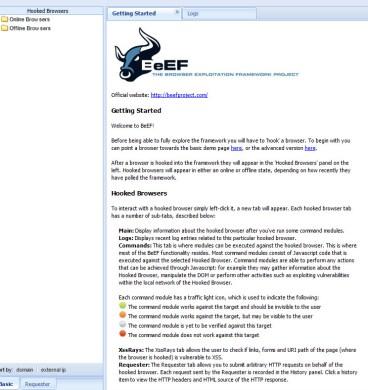 BeEF_2