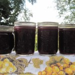 Canning Grape Juice and Jelly