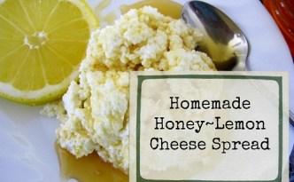 Homemade Honey Lemon Cheese s