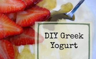 DIY Greek Yogurt ~ The Self Sufficient HomeAcre