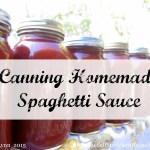 Canning Homemade Spaghetti Sauce