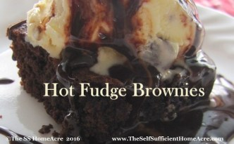 Hot Fudge Brownies - The Self Sufficient HomeAcre