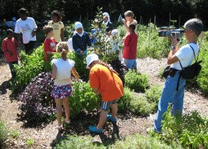 Filming at the Washington Youth Garden