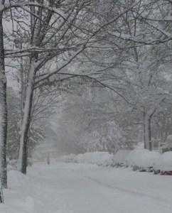 blizzard '10 010