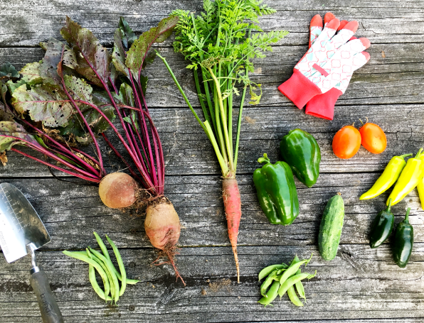 Growing A Vegetable Garden / The Small Town Foodie