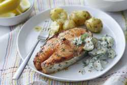 Small Of Salmon Steak Recipe