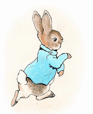 peter-rabbit