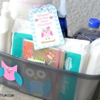 Teacher Appreciation Basket & Free Owl Printable Tag ~ Giveaway