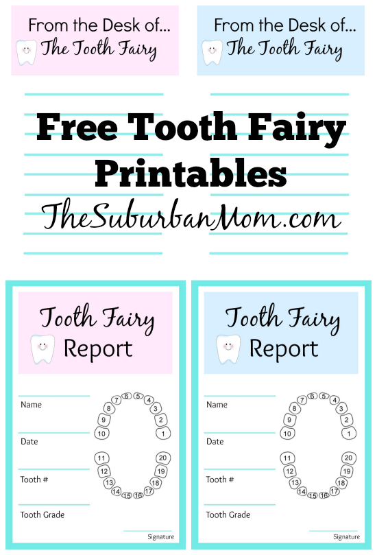 Tooth Fairy Ideas And Free Printables TheSuburbanMom