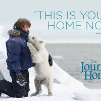 The Journey Home DVD ~ $50 Walmart Giveaway