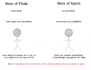 born again new birth