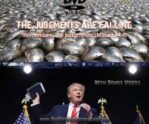 judgments-are-falling-cover