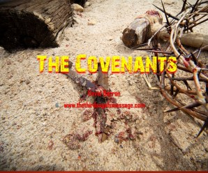 the-covenants