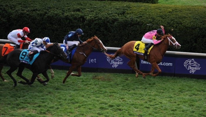 5 Breeders' Cup Contenders You May Not Have Heard Of
