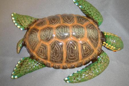 plastic turtle 4.jpg