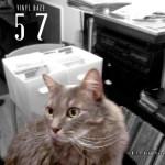 Episode 57 – Vinyl Daze