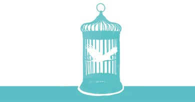 Bird in a cage illustration